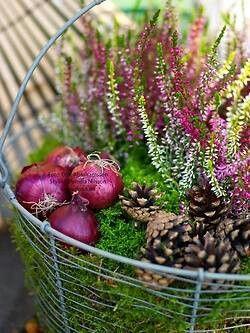 Love those warm colours!