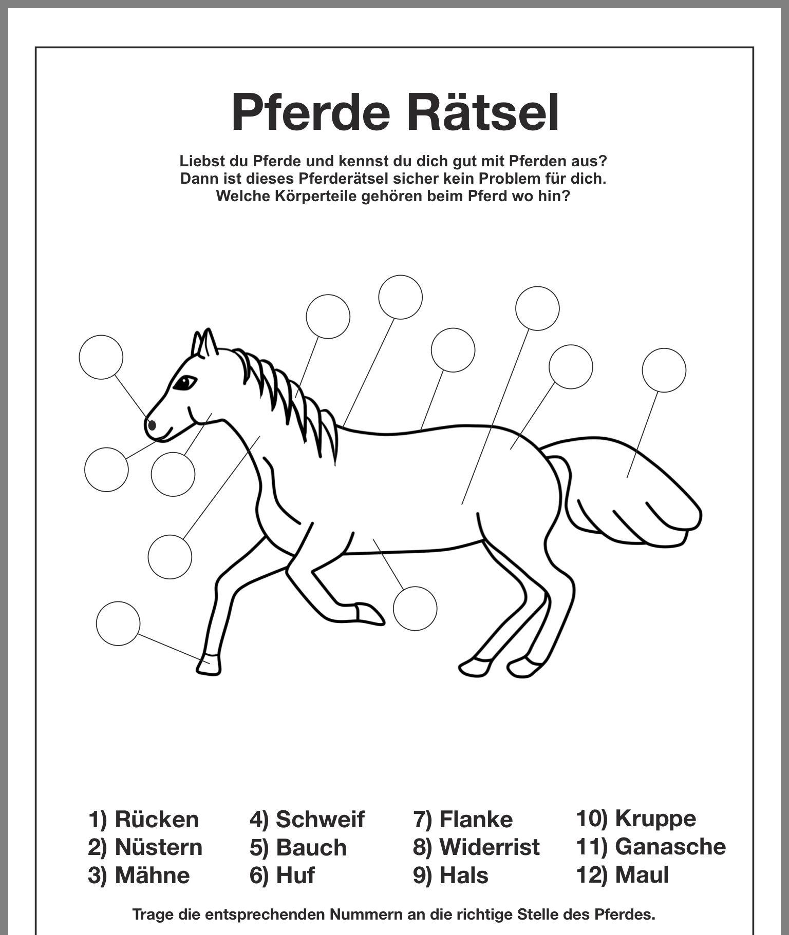 ausmalbilder pferde reiterhof  tiffanylovesbooks