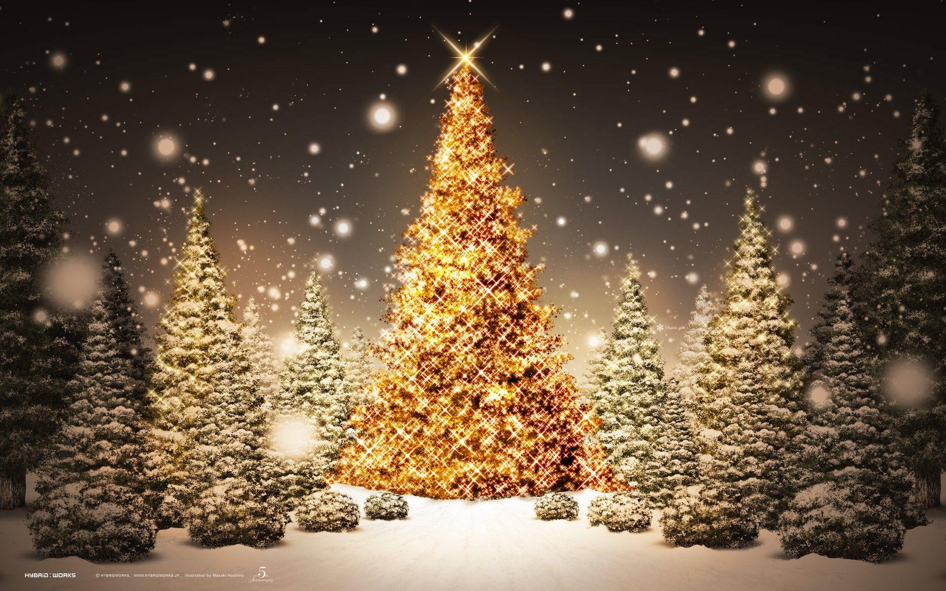 50 Beautiful Christmas Desktop Wallpapers Ginva Christmas Lights Wallpaper Christmas Wallpaper Hd Christmas Tree Wallpaper