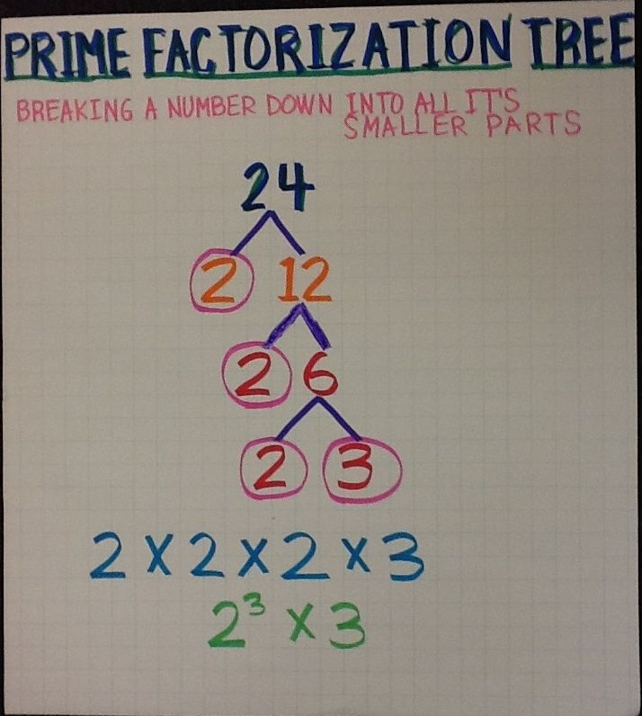Prime Factorization Tree  Th Grade Ccs Anchor Charts