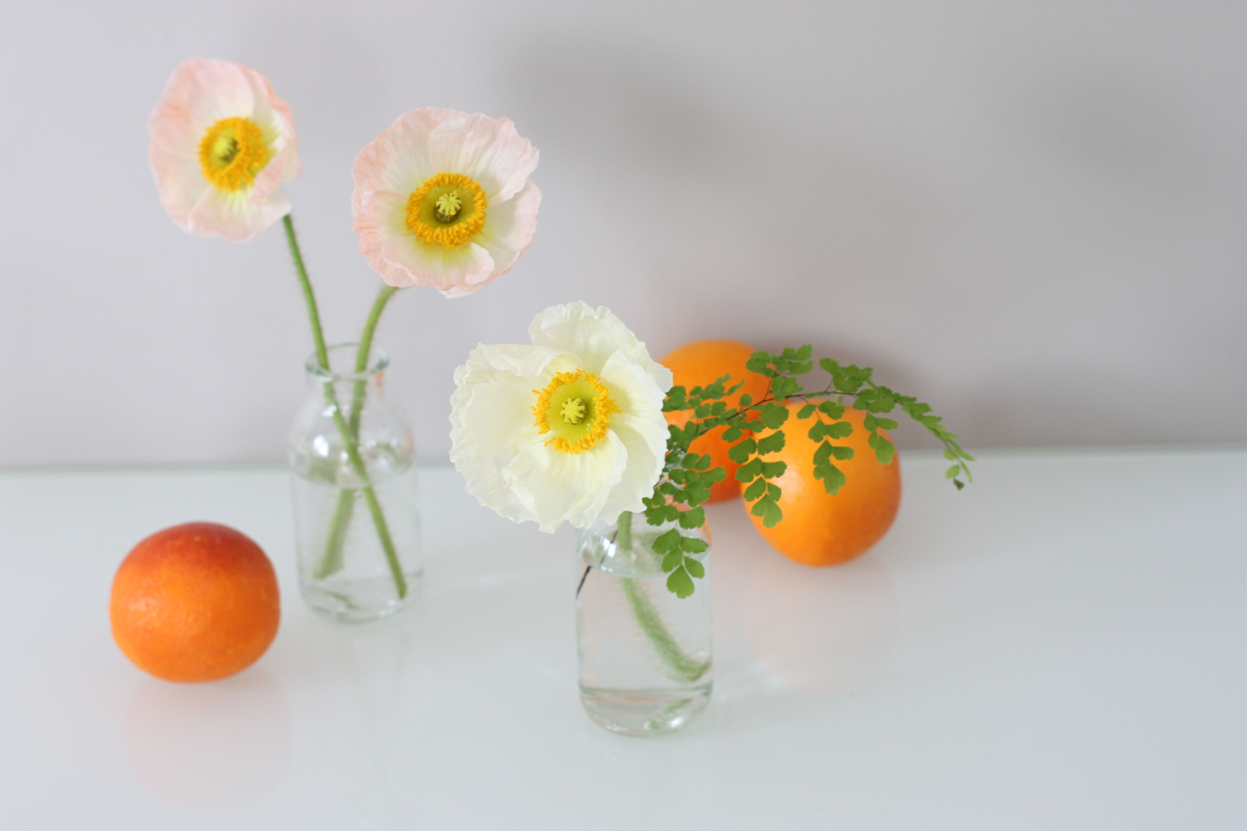 Wedding decorations yellow and gray  How about pastel peach poppies oranges u simple vases for your