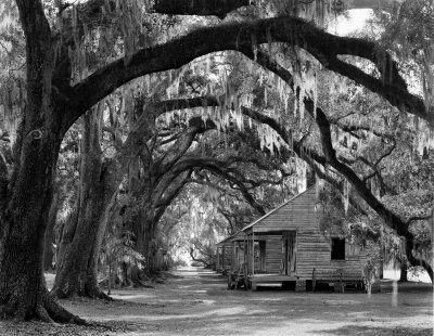 9adf0a8b4fc11996c4da0d83786faf0d Harriet Tubman Plantation House on anime plantation house, family harriet tubman house, grave harriet tubman house, civil war plantation house, harriet tubman house new york, slavery plantation house,