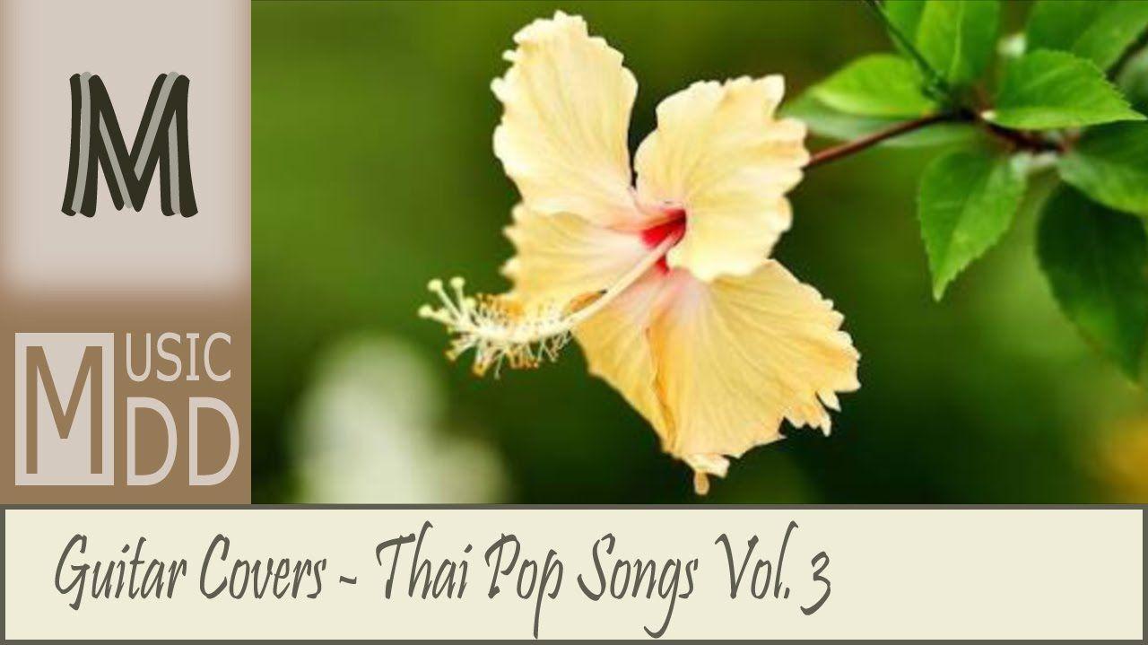 รวมเพลงดัง Cover บรรเลงกีต้าร์เพราะๆ - Fingerstyle Guitar Vol.3