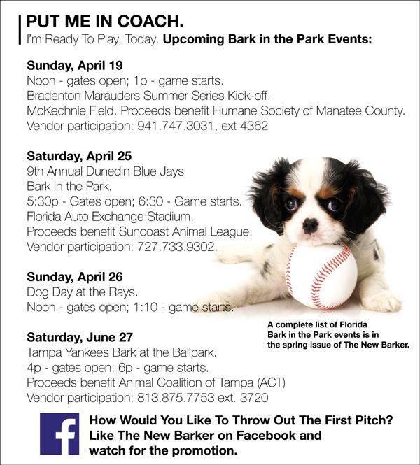 Upcoming Bark in the Park Events #dog #baseball #barkinthepark #dogevents #florida