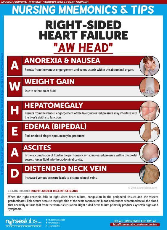 Cardiovascular Care Nursing Mnemonics and Tips   EMT Stuff