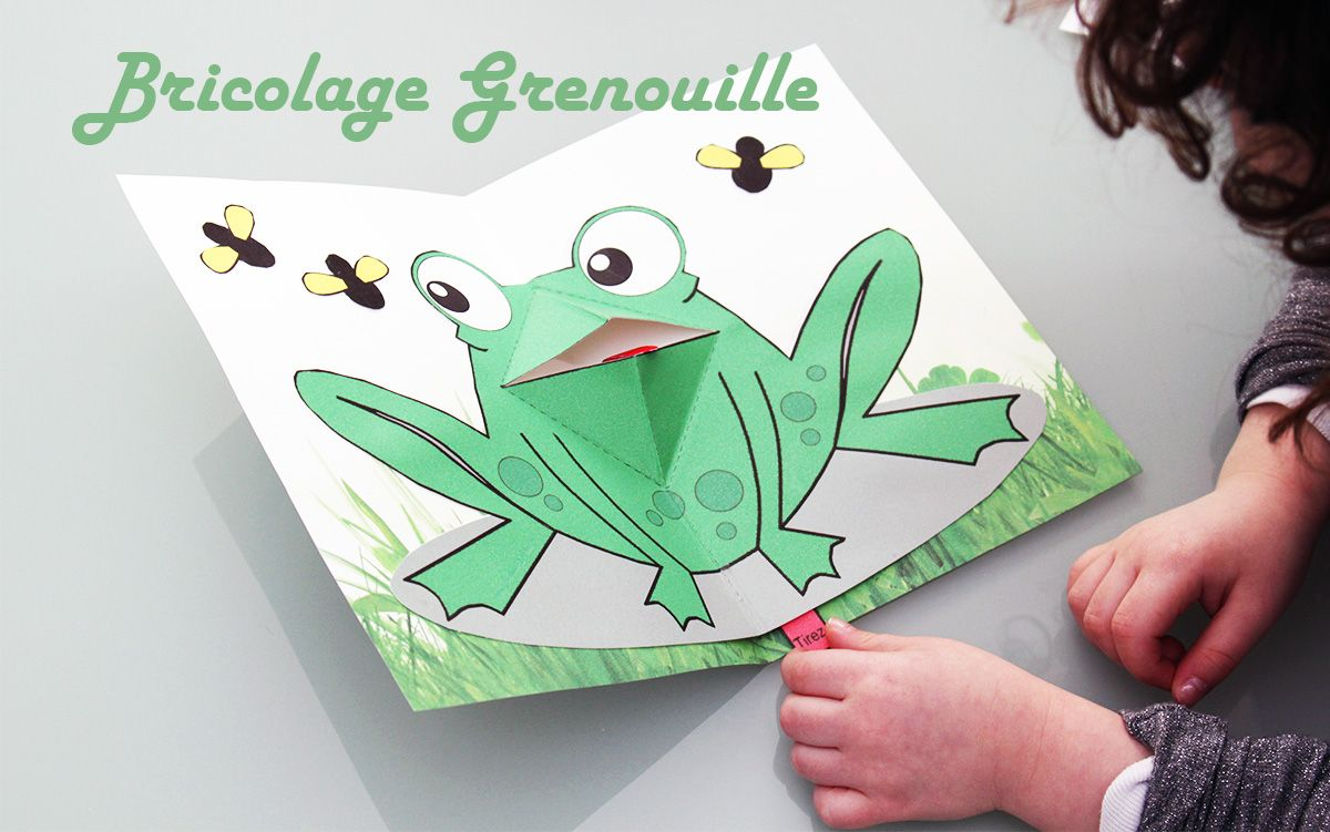 R Aliser Une Grenouille Pop Up