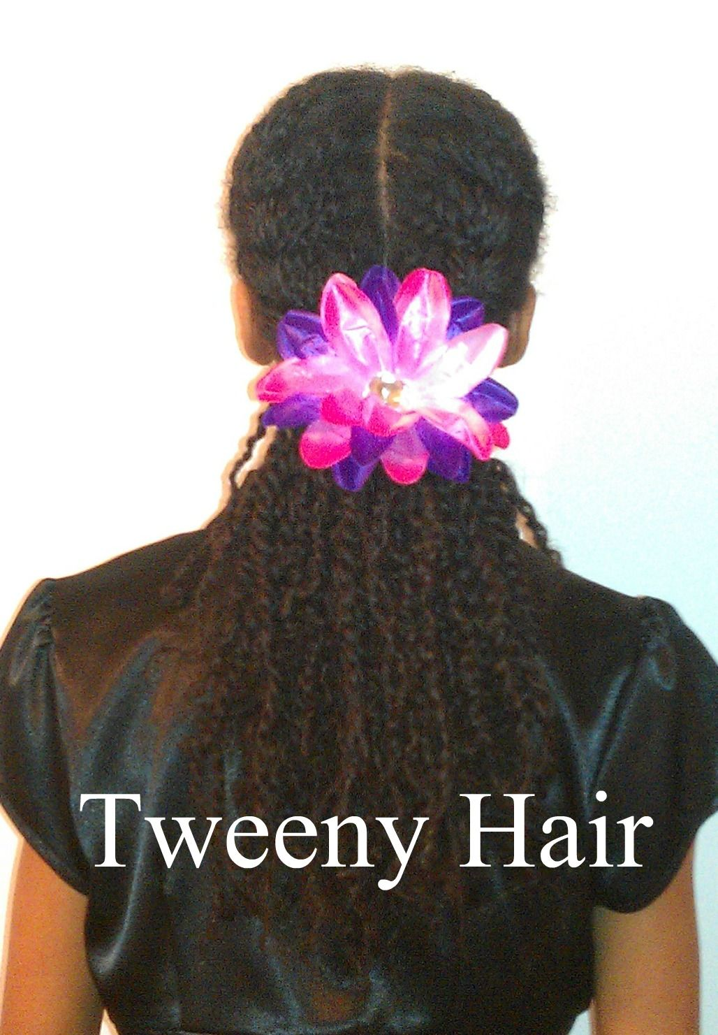 Tweeny hair quick pretty style with twists lilu minnie me hair