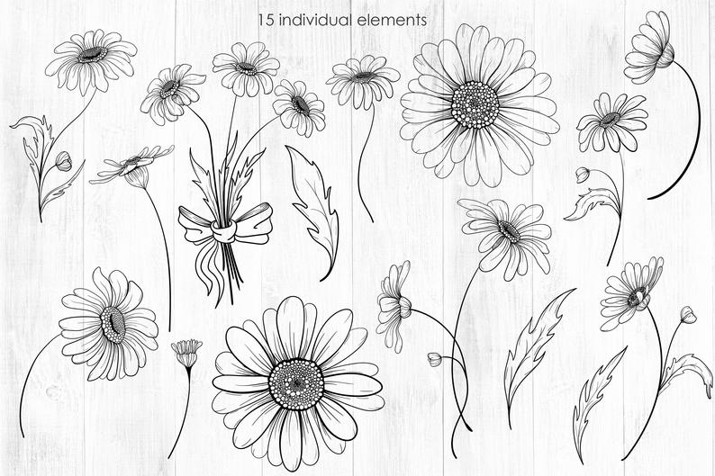 Daisy SVG PNG Daisy Clipart Printable flowers Line art | Etsy