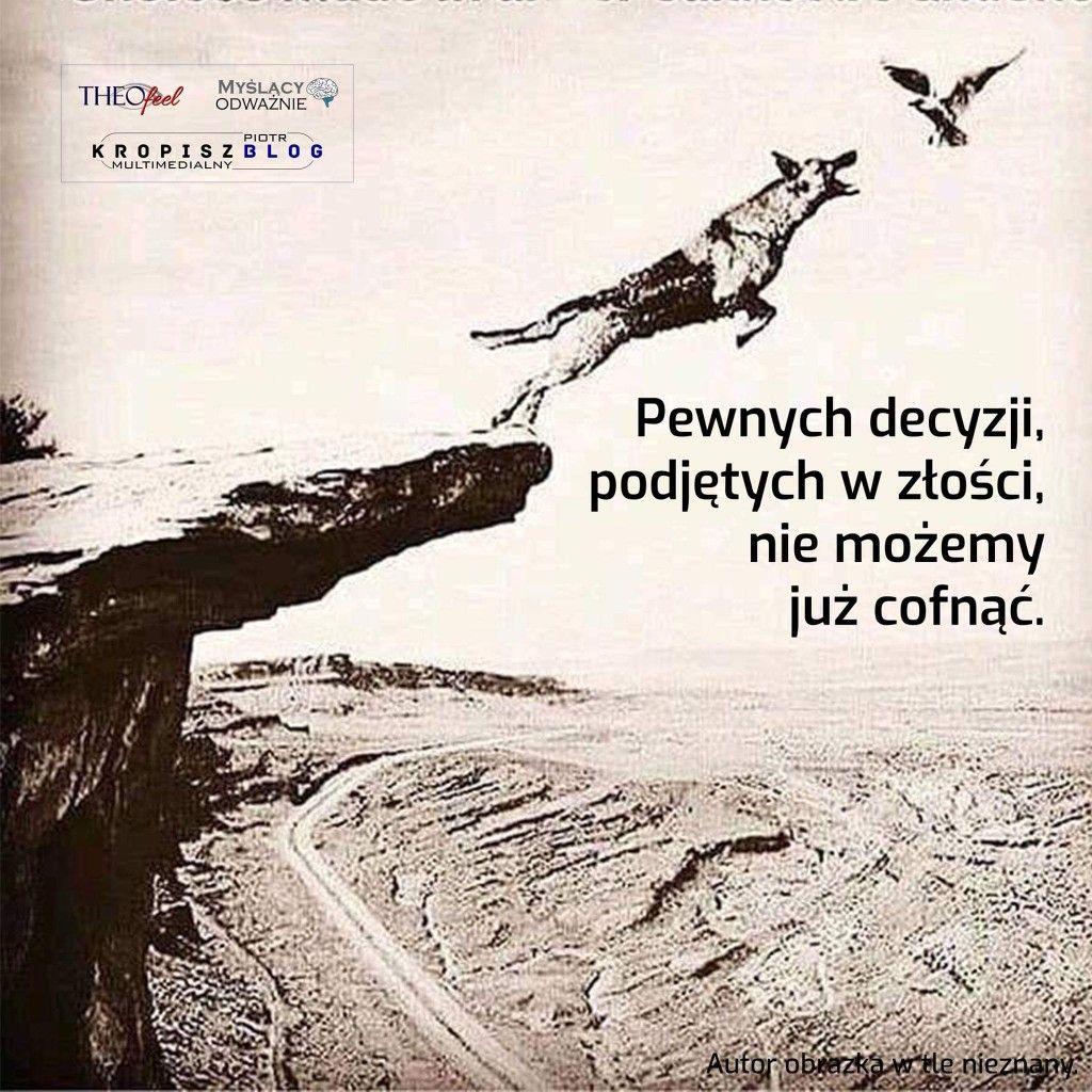 Pin By Katarzyna Goralczyk Herwart On Digi Stemple Digi Stamps Scrapbook Baby Cards