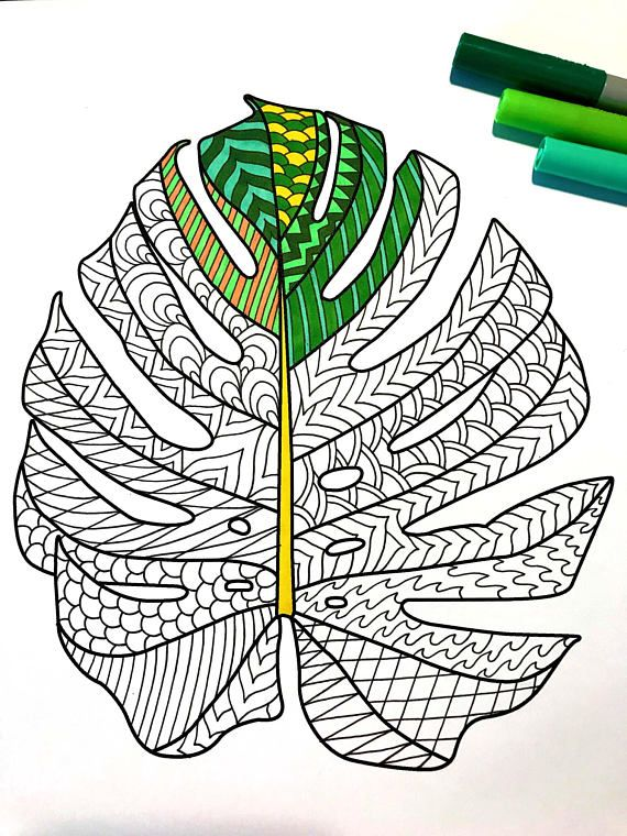 Monstera Deliciosa Leaf Pdf Zentangle Coloring Page In 2019