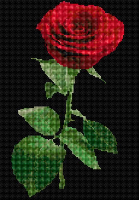 Cross Stitch | Red Rose xstitch Chart | Design