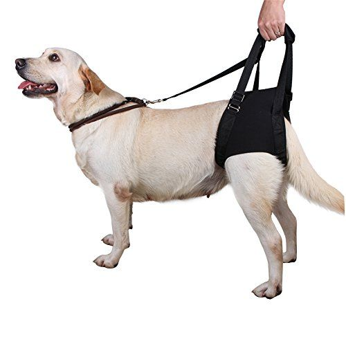 Lalawow Dog Support Harness For Rear Legs Injuries Joints
