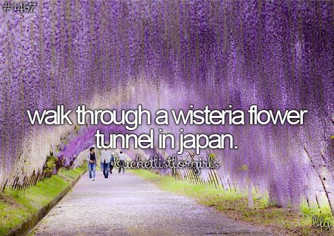 WSM?: 1. I don't know where the tunnel is. 2. Medicine . 3. I don't speak Japanese. 4. $