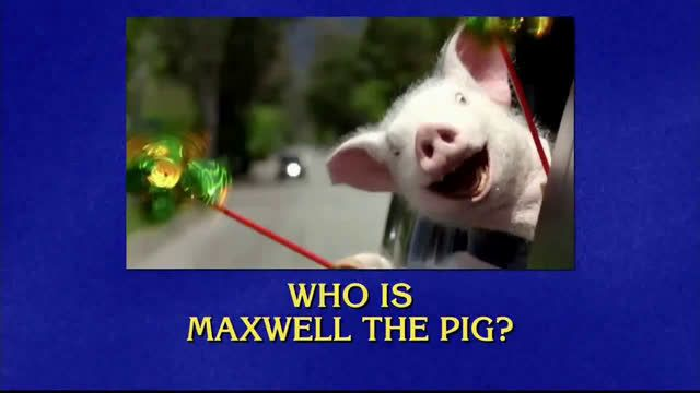 Geico Car Insurance - Jeopardy!: Pig Ad Commercial on TV ...