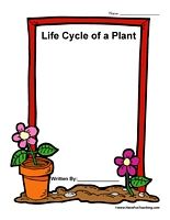 math worksheet : 1000 images about plant life cycle on pinterest  plant life  : Life Cycle Of A Plant Worksheet For Kindergarten