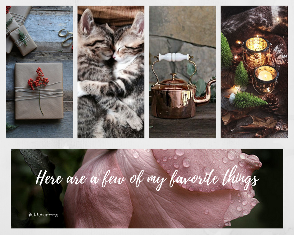 Raindrops On Roses And Whiskers On Kittens Bright Copper Kettles