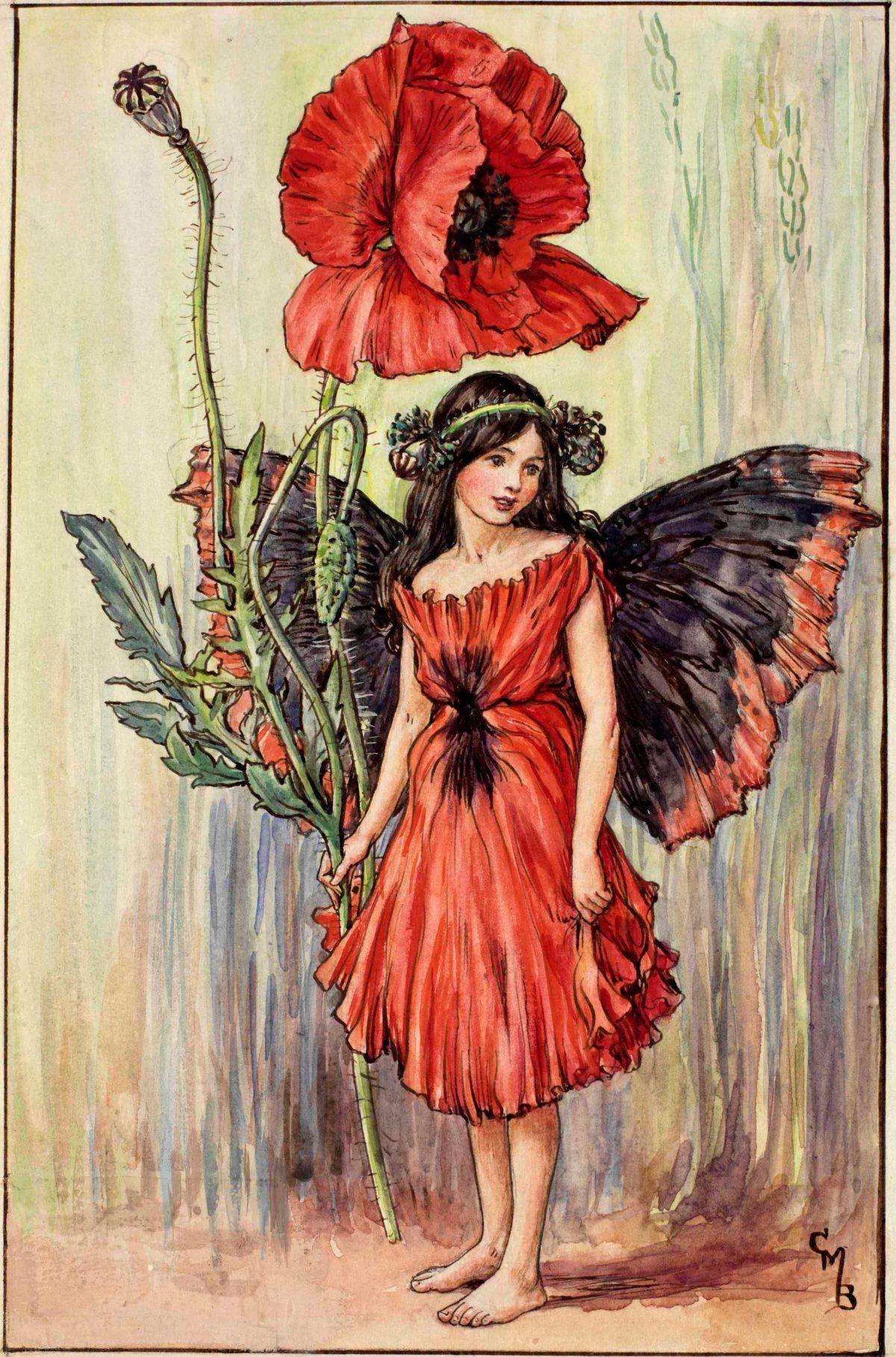 Poppy Fairy Cicely Mary Barker Art Pinterest Flower Fairies