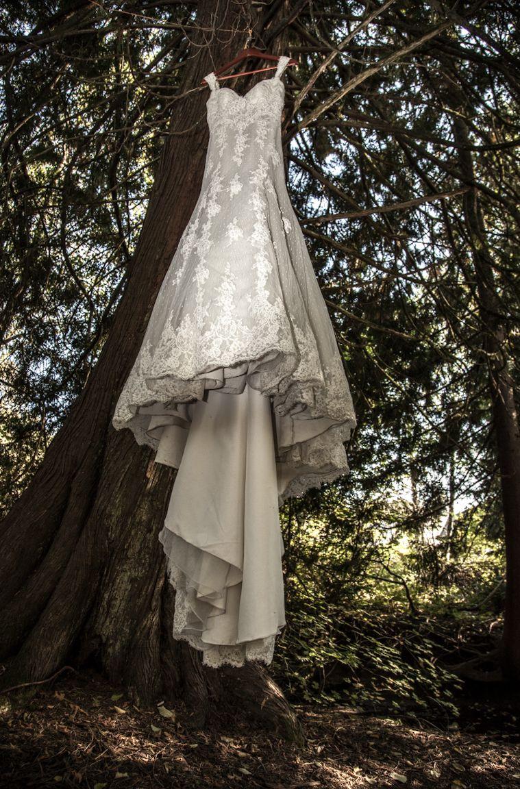 Wedding dress - Long train -Lace - Favourite Tree - Annette Waterbeek photocred