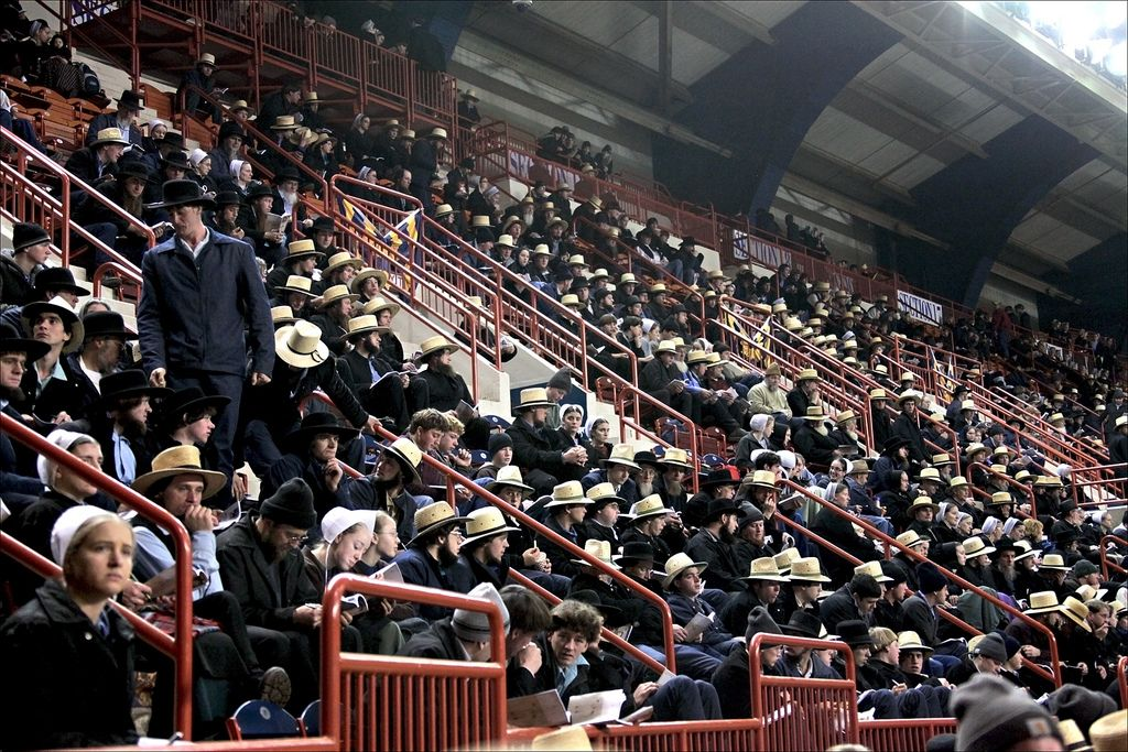 Part of the crowd at a Amish/Mennonite horse auction