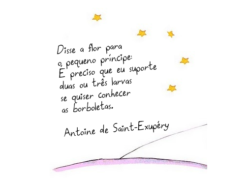 Frases Do Pequeno Principe: O Pequeno Príncipe