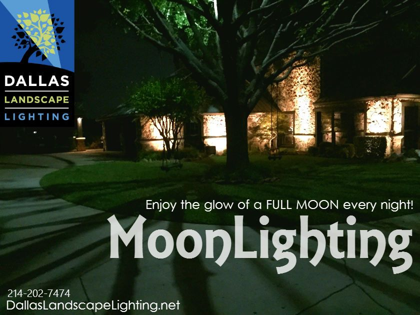 Dallas Landscape Lighting installs landscape lighting in trees to create moonlighting effect - Call Dallas Landscape & Moonlighting / Tree Lighting | Dallas Landscaping and Lights azcodes.com