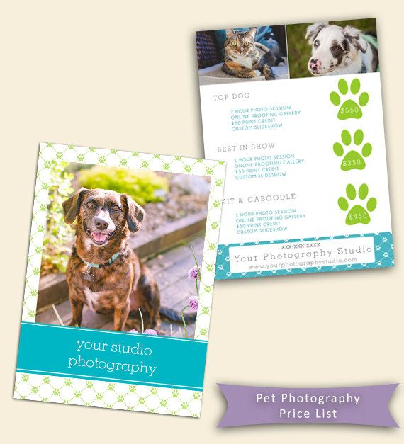 Pawprint Price Sheet for Pet Photography - Photography Template - price sheet template
