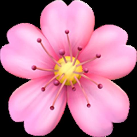 flower crown hearts flowercrown happy pink cute