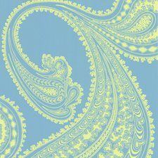 66/5035.CS Rajapur Lime/Tu by Cole & Son
