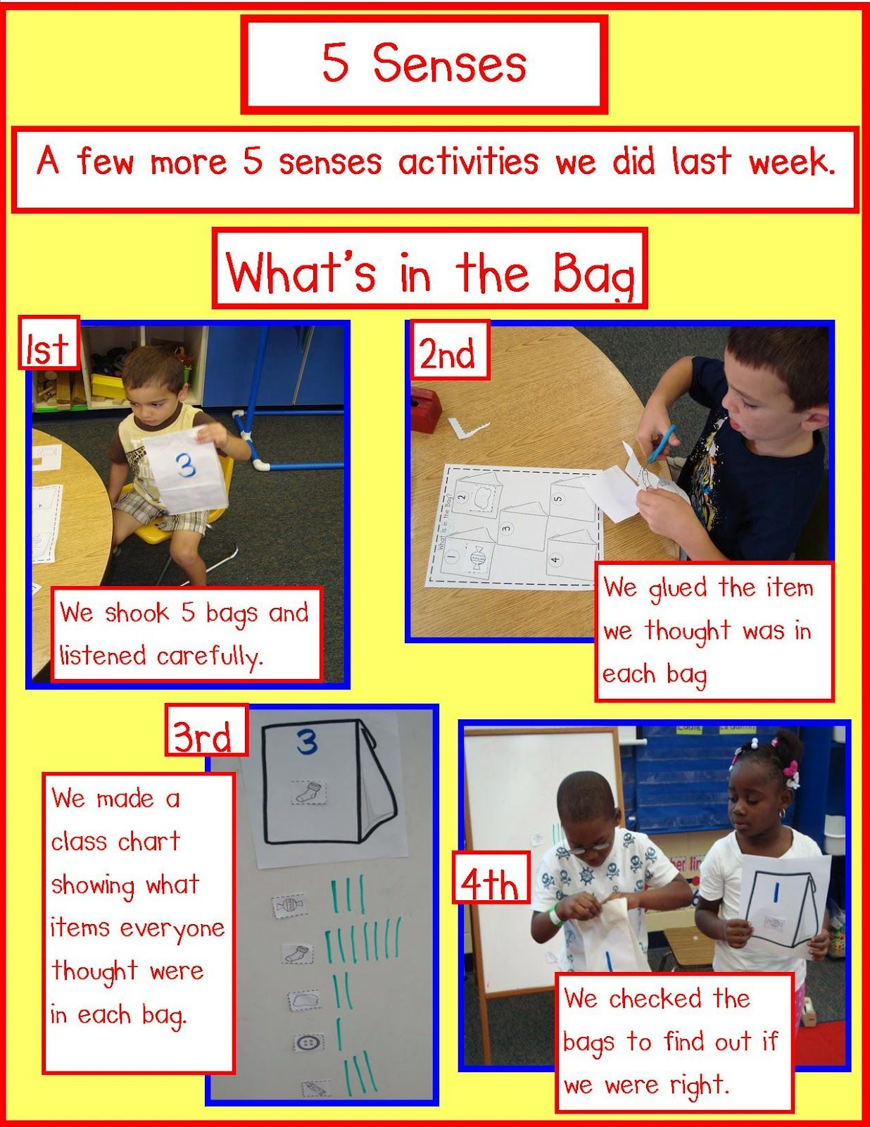 Golden Gang Kindergarten 5 Senses Freebies Science