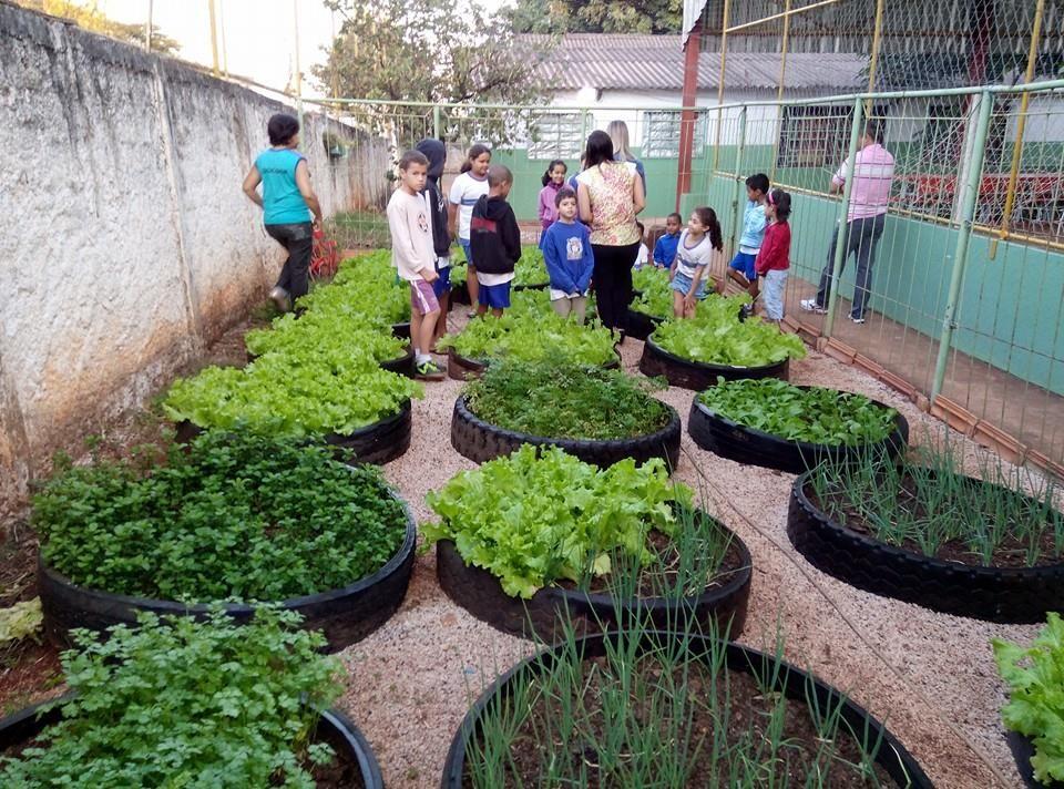 Suficiente Portal Goiânia - Notícias - Projeto Horta Escolar incentiva  EU22