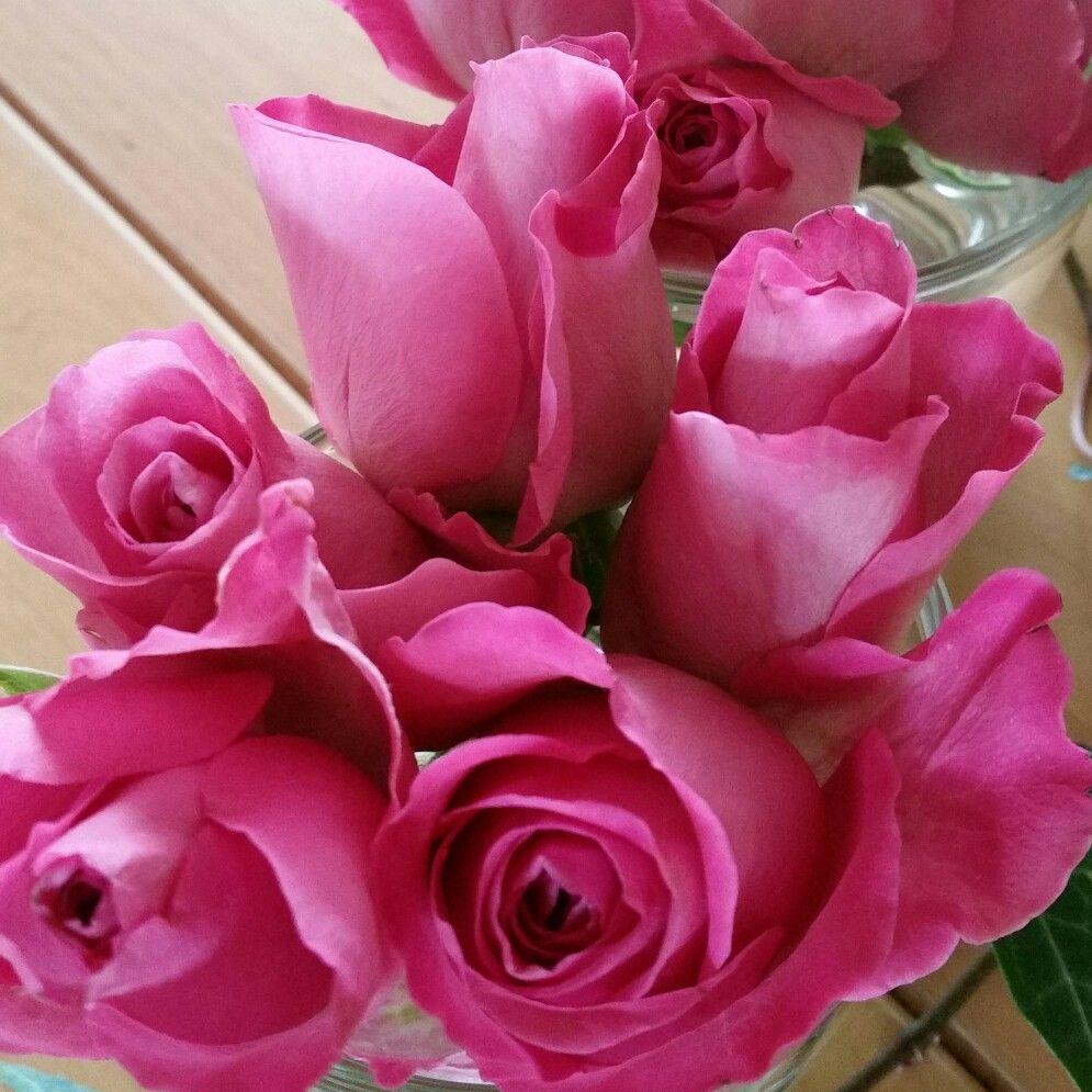 Grattis alla mammor! #lillahultsblommor #morsdag