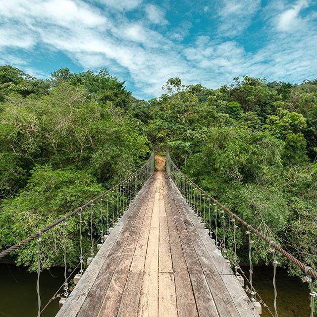 Reserva Natural Ecoturistica El Danubio -#Morelia, piedemonte amazónico, Caquetá.