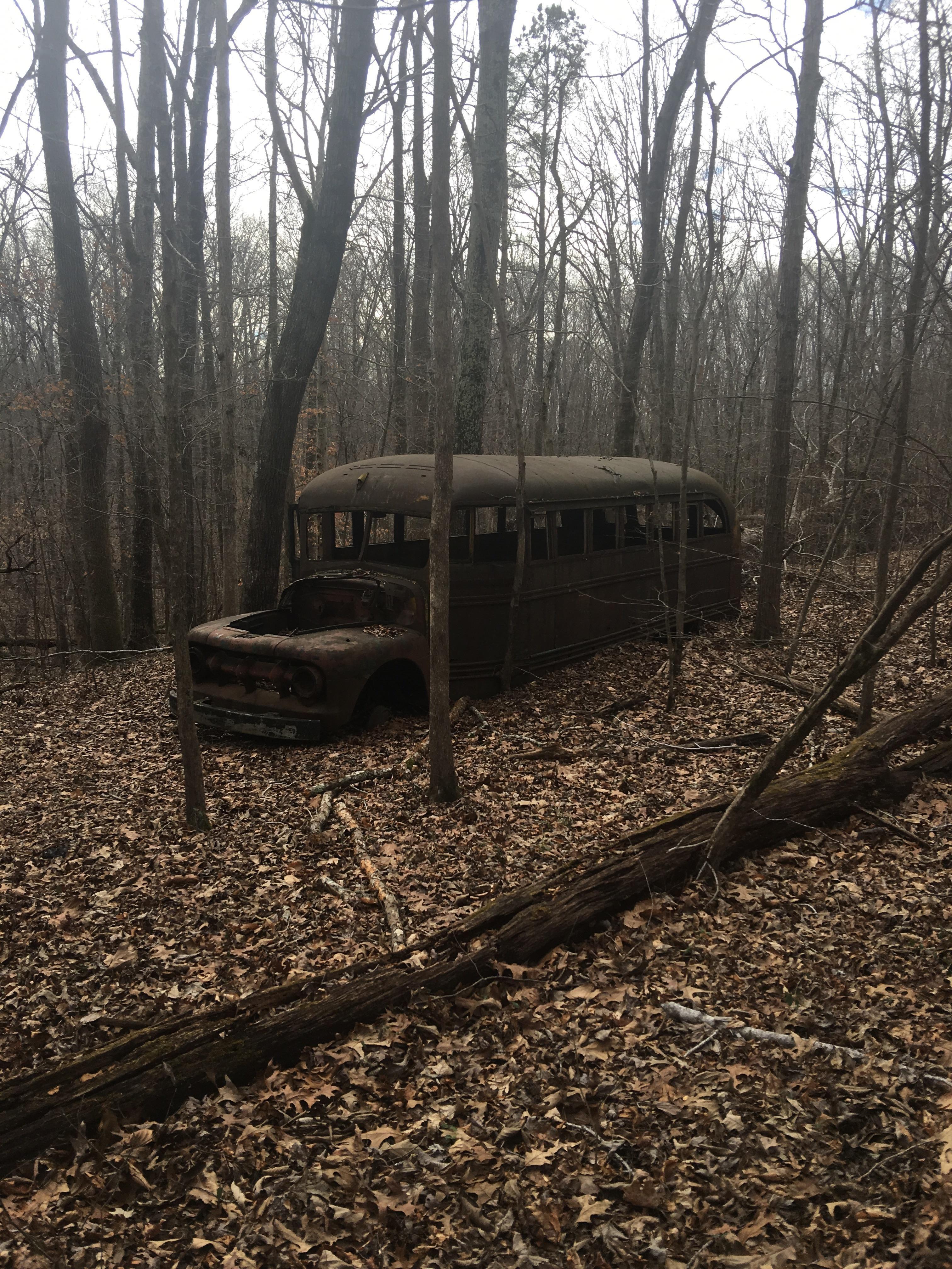An abandoned school bus in LBL Stewart County TN