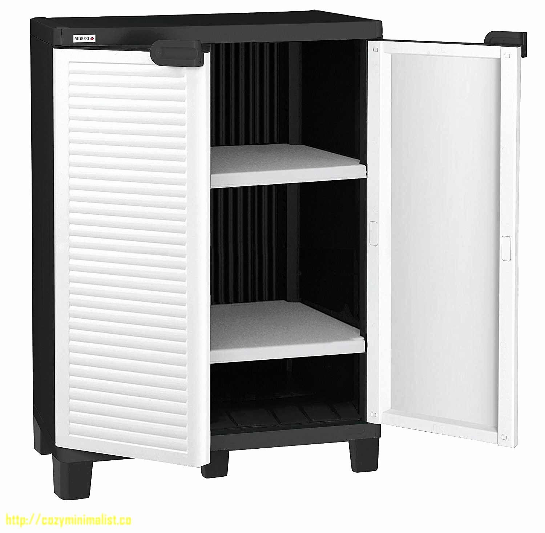 Lit Armoire Escamotable Conforama Lit Armoire Escamotable Conforama Armoire Lit Horizontale Escamotable Strada Tall Cabinet Storage Locker Storage Furniture