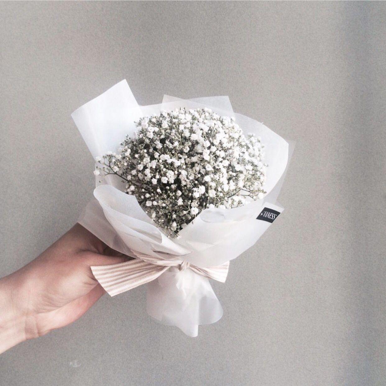 vanessflower   F l o w e r s   Pinterest   Flowers, Flower and Plants