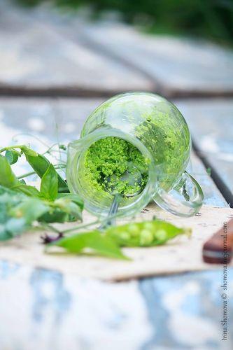 Гастрономические эксперименты неисправимой оптимистки - Песто из зеленого горошка и шпината