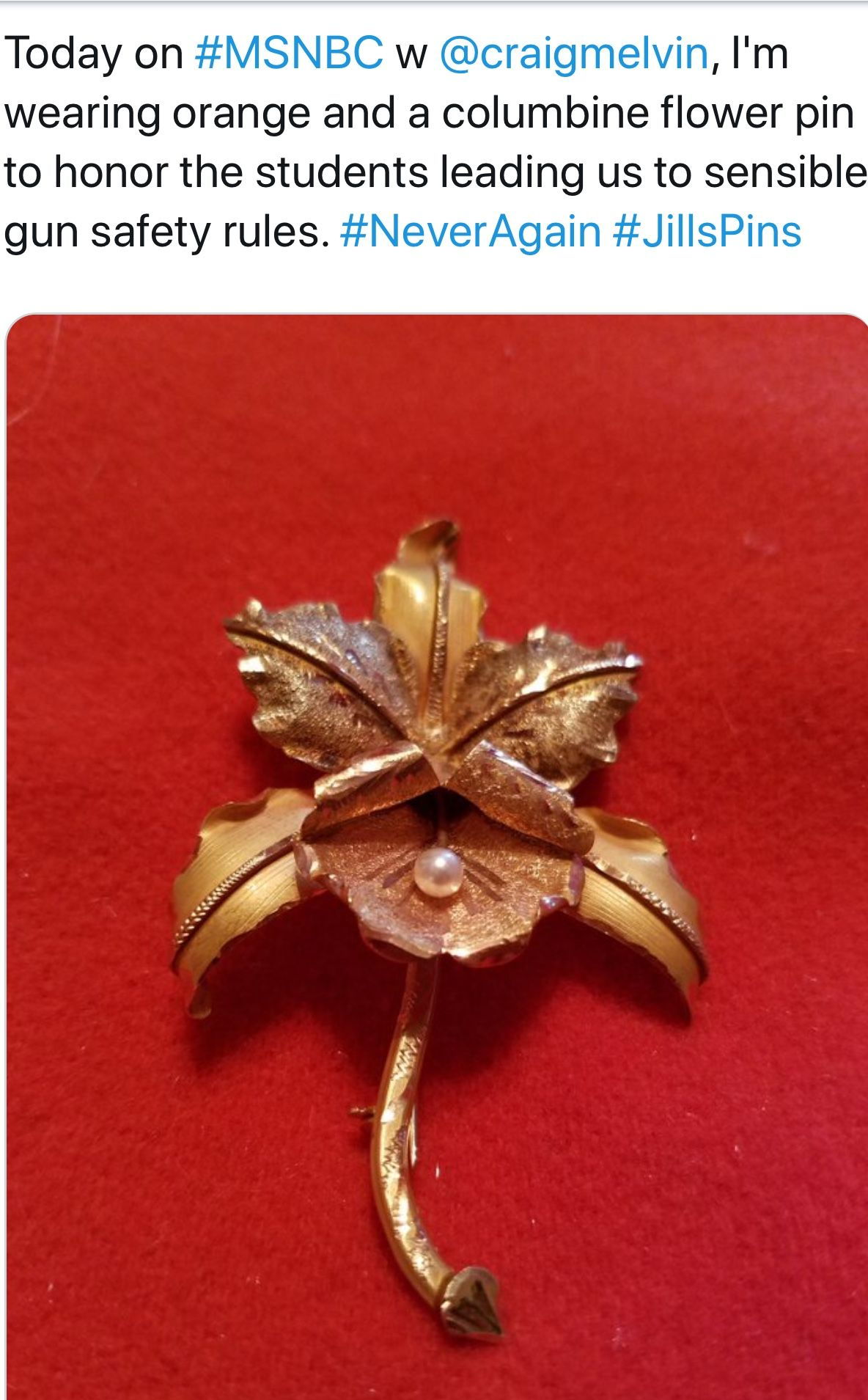 Pin By Lynne B On Jill Wine Banks Pins Jewelry Brooch Pins