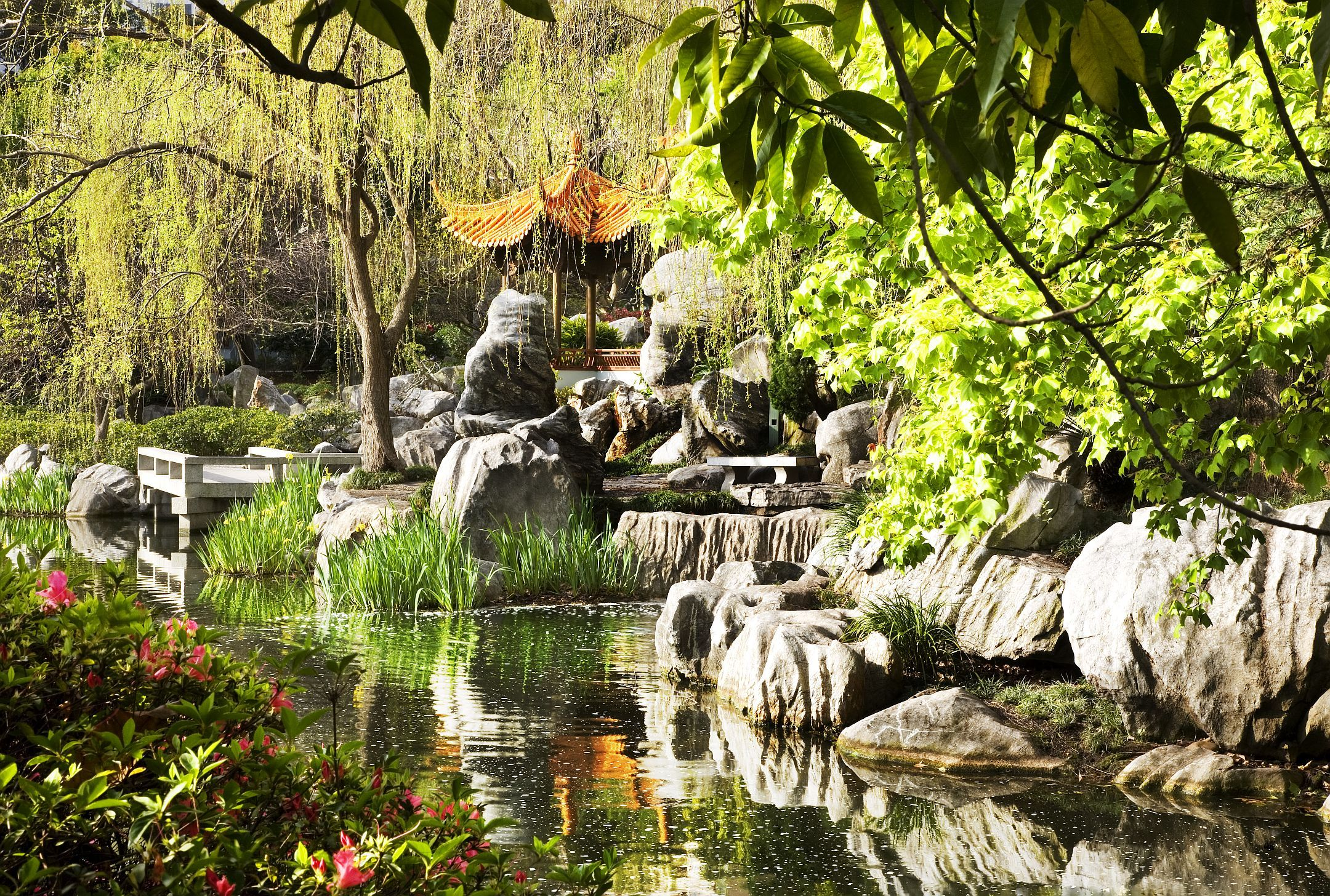 chinese garden of friendship sydney, australia Chinese