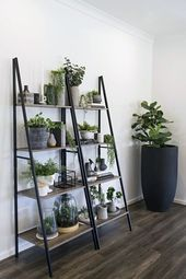 Kmart Hack Industrial Shelf Turned Vertical Garden  kmart industrial ladder shelf indoor vertical garden ideas