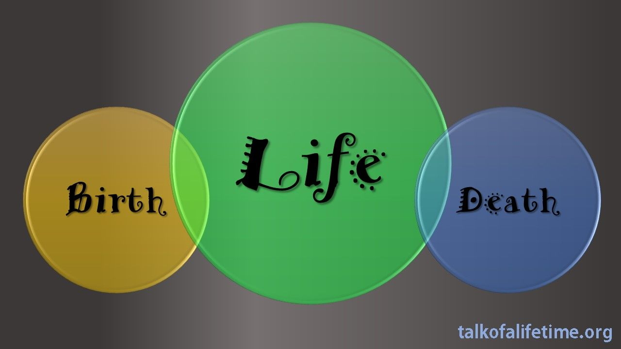 Be sure to take a look at our latest blog post. http://talkofalifetime.org/blog/ #talkofalifetime