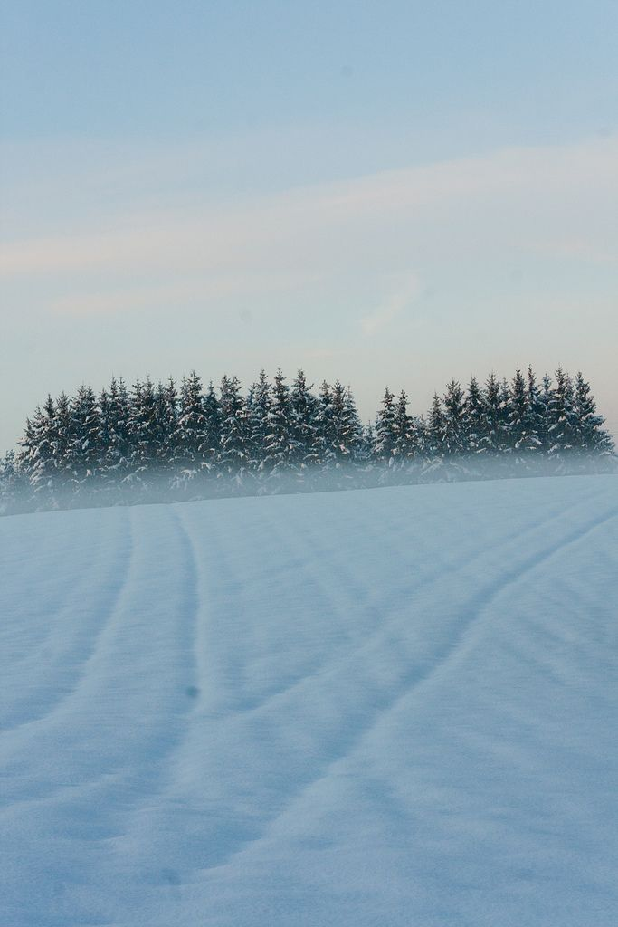 Winter is coming (Jura, France)