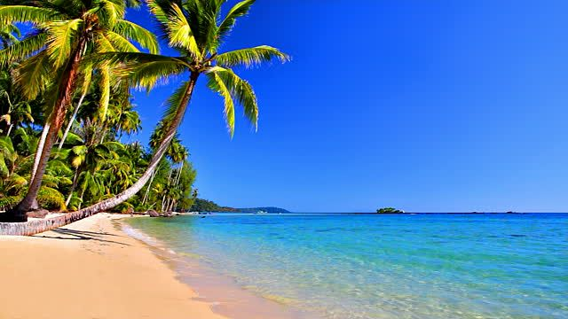 Images Of Tropical Beach From Water
