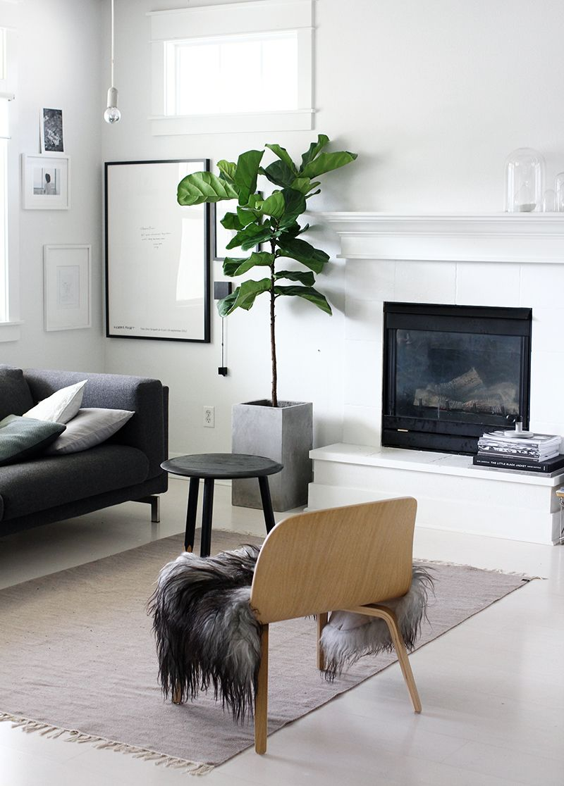 Minimalist Living Room Indoor Plants White Black Decor