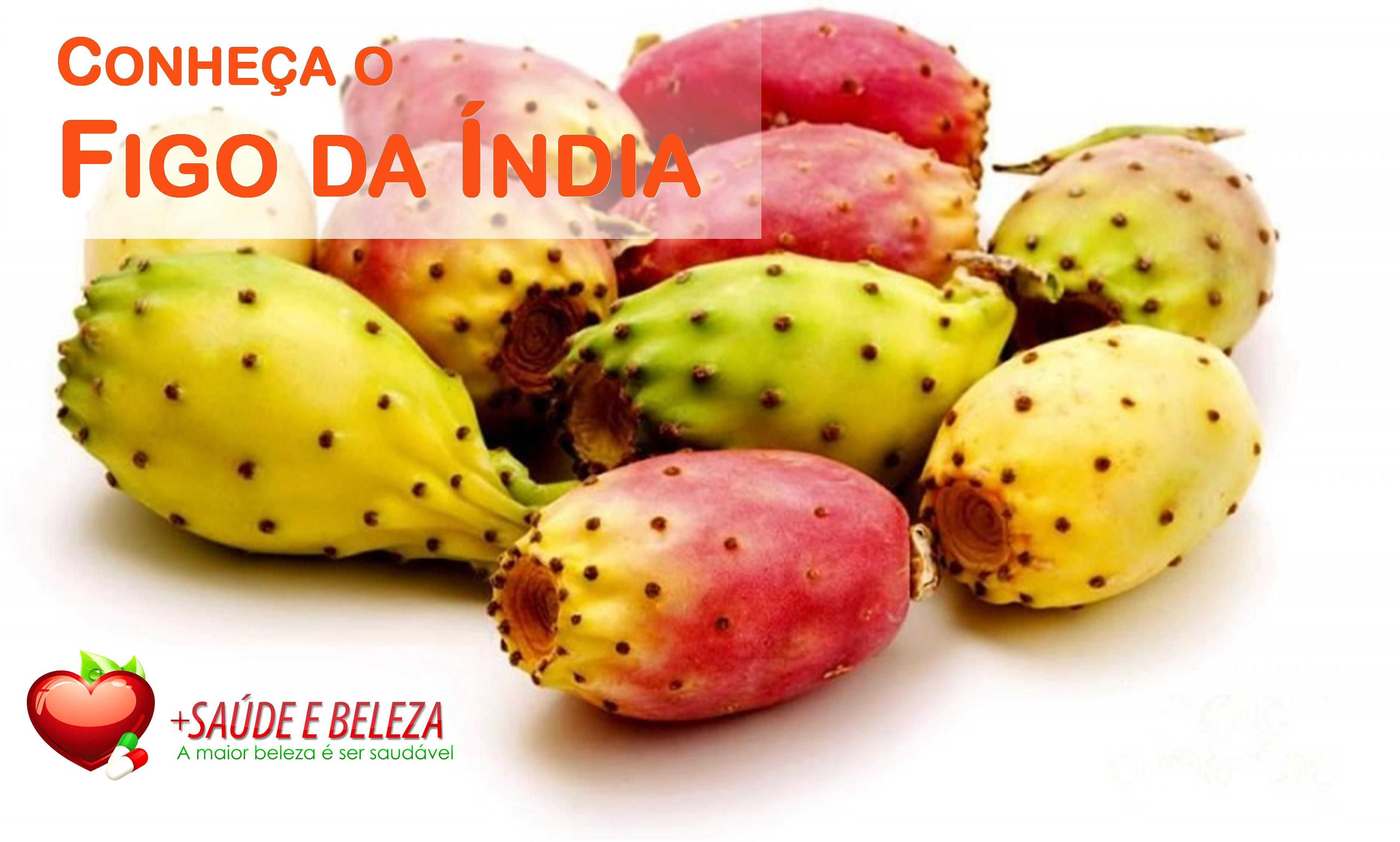 Como planta medicinal, o Figo da Índia é indicado para tratar casos de afecção das vias respiratórias, asma, circulação, coqueluche, diarreia, disenteria, dor reumática, febre gástrica biliosa, tosse, fígado, angina, úlcera, diabetes, tumor benigno da próstata e vermes. Leia mais no blog: http://www.maissaudeebelezablog.com.br/2016/11/figo-da-india-beneficios-e-propriedades.html