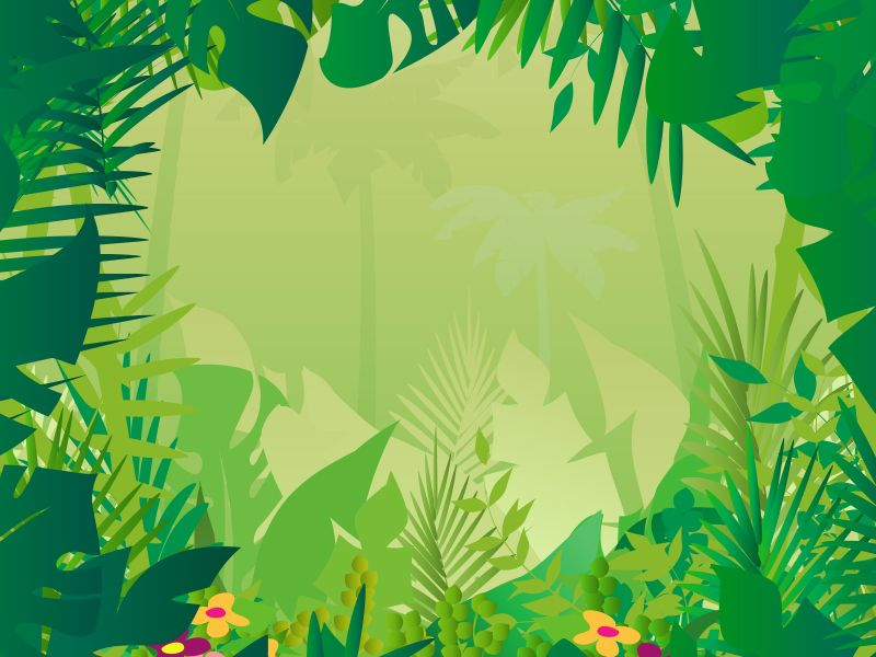 Jungle Theme Wallpaper Wallpapersafari Jungle Pictures