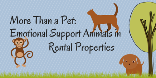 More Than a Pet Emotional Support Animals in Rental
