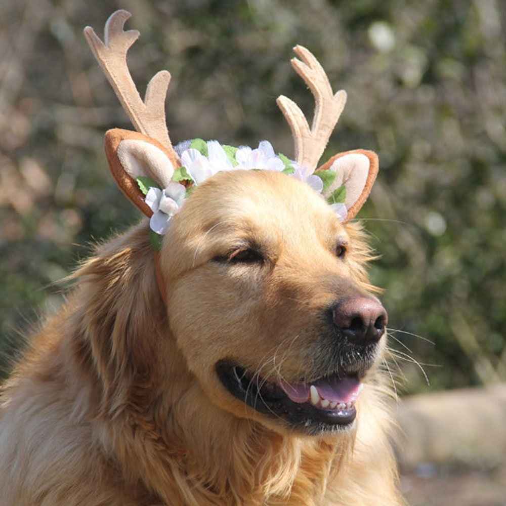 Bolbove Pet Christmas Lace Flower Antler Head Band And Santa Collar For Medium To Large Dogs Large You Can Find Ou Reindeer Dog Dogs Dog Halloween Costumes