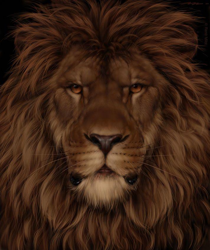что найдите льва на картинке лоджии или балкона