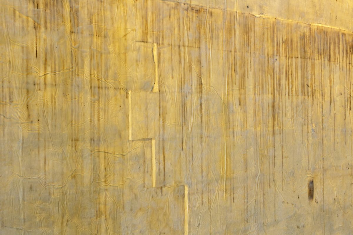 In Artangel's latest work, artist and conservationist Jorge Otero-Pailos displays a latex cast of a wall in Westminster Hall, containing hundreds of years of pollution and dust.