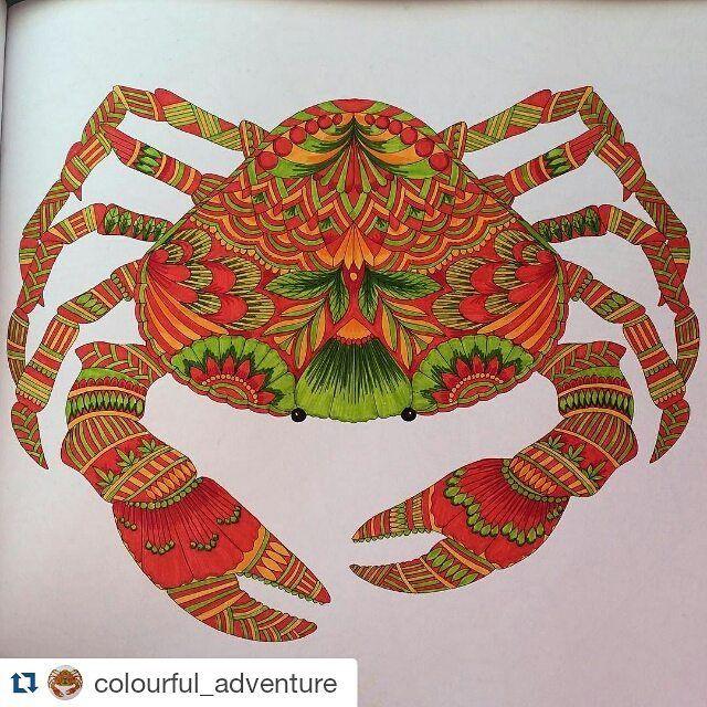 Belíssimo #Repost @colourful_adventure ・・・ #crab #milliemarotta #colouringbook #colouring #tropicalwonderland #coloring #coloringbook #coloringbookforadults #colouringbooksforadults #colorful #colourful #milliemarottabooks